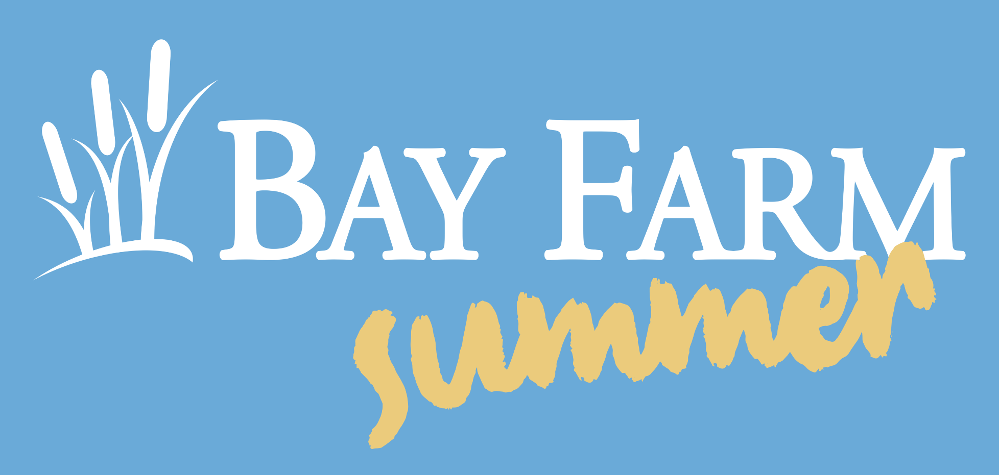 Bay Farm Summer Program